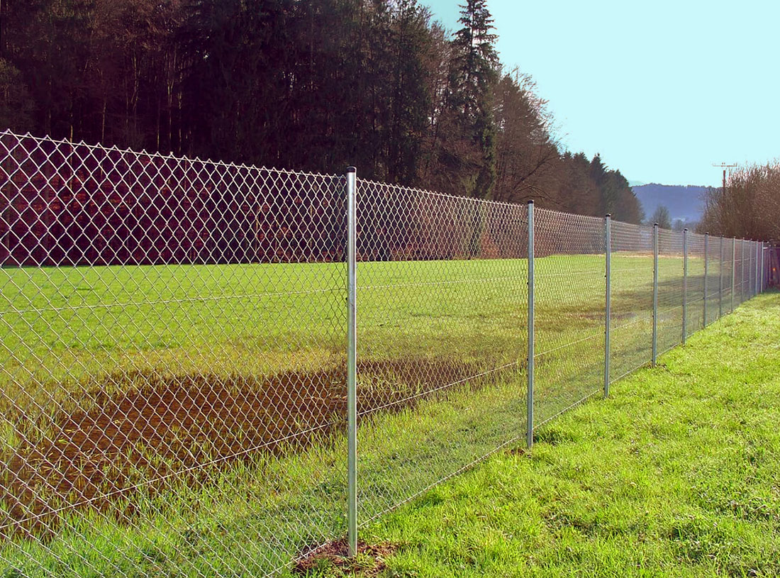 Картинки забор из рабицы